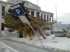 Febbraio 2012 - soffiava un po' di Bora... February 2012 - It was a little windy day...