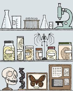 Science art print: Ars moriendi