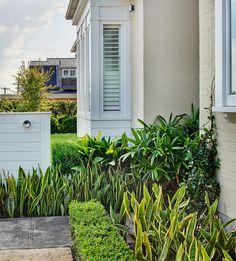Front garden 1 | by William Dangar & Associates