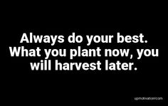 Always do your best. What you