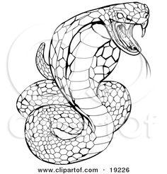 7 Best Cobra Stencils Images Snake Art Snake Drawing Cobra Snake