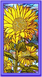sunflower and stained glass ...two of my favourite things