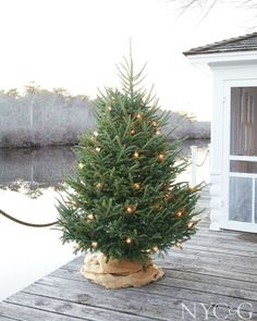 The Simple Life: 10 Christmas Holiday Tips from Tricia Foley – Remodelista – Outdoor Christmas Lights House Decorations Noel Christmas, Outdoor Christmas, All Things Christmas, Winter Christmas, Christmas Lights, Cabin Christmas, Coastal Christmas, Primitive Christmas, Christmas Flower Decorations