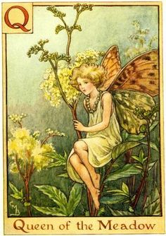 Quuen of the Meadow fairy.