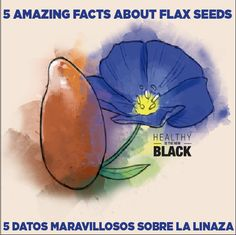 5 amazing facts about flax seeds 1. The seeds are beneficial for heart health. 2. Flaxseed is one of the most concentrated plant sources of omega-3 fats. Flaxseeds contain 50 to 60 per cent omega-3 fatty acids . 3. The fact that they are a rich source of omega-3 fatty acids can help lower blood cholesterol and blood pressure 4. Flaxseeds are rich in antioxidants, B vitamins & dietary fibre. 5. Flaxseeds are also rich in protein and potassium.
