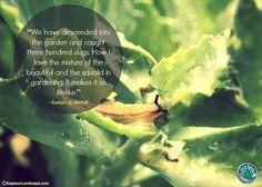Flowering Wisdom | Gardening Quotes http://eaglesonlandscape.com/flowering-wisdom-gardening-quotes-38/