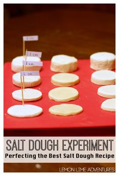 Salt Dough Experiment for the Best Recipe