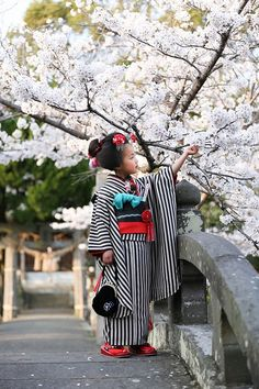Kimono girl 七五三 / Shichi-Go-San Japanese Outfits, Japanese Fashion, Japanese Beauty, Japanese Girl, Japon Tokyo, Art Chinois, Modern Kimono, Japanese Costume, Art Asiatique