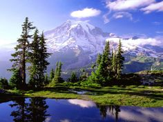 Mount Rainier National Park is a United States National Park located in southeast Pierce County and northeast Lewis County in Washington state. It was established on March 2, 1899 as the fifth national park in the United States