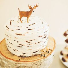 A Woodland Themed First Birthday Party