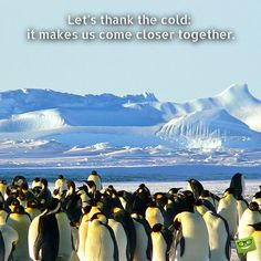 Let's thank the cold – it makes us come closer together.