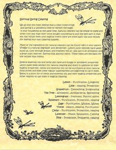 Book of Shadows:  Spiritual Spring Cleaning.