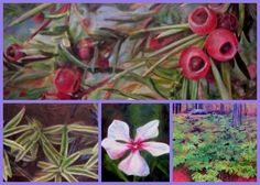 """Artist Julie Mader started working on a project that features plants that are used in cancer medicines. The fascinating result led to a traveling exhibition. She tells her story and presents her art on the feature """"Art with a Healing Touch"""" on www.ArtsyShark.com"""