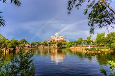 https://flic.kr/p/Vh2wXx | Rainbows Over Everest | Today's photo tour sends us to Disney's Animal Kingdom for a shot I have never gotten anywhere in a Disney Park. It's rare to see one rainbow but when you see two its simply magical. I knew after the heavy rains that day that there would be a rainbow. So I ran down to where I thought it would be and was surprised at what I saw. Have you seen rainbows at Disney? Have a magical day!  Visit Disney Photo Tour on Facebook and Instagram