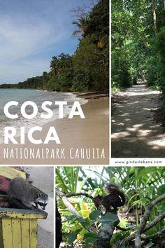 Costa Rica Nationalpark Cahuita – unsere Tipps für einen Besuch im Cahuita Nationalpark an der Karibikküste Costa Ricas. Rundreise Costa Rica - Roadtrip mit Tipps, Highlights und Karte auf www.gindeslebens.com #Cahuita #CahuitaNationalpark #Nationalpark #RundreiseCostaRica #CostaRica #Roadtrip