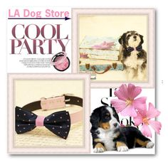 """LA Dog Store"" by ladogstores ❤ liked on Polyvore featuring H&M"