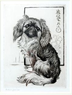 """Pekingese """"Chu-Chu"""" by Marion Rodger Hamilton Harvey - Pekingese Puppies, Spaniel Breeds, Fu Dog, Japanese Chin, Paws And Claws, Dog Paintings, Dog Art, Shih Tzu, Poodle"""