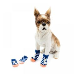 🐶 Online shopping for Little Dogs Supplies with free worldwide Funny Dogs, Cute Dogs, Dog Booties, Dog Supplies Online, Dog Socks, Tiny Puppies, Little Dogs, Dog Accessories, Small Dogs