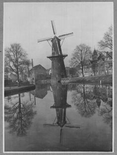 Nieuwe Haven met molen de Walvisch