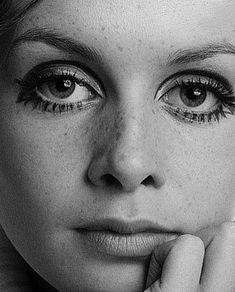Twiggy dramatic eye makeup, - Eyeshadow Looks - Twiggy Style, Twiggy Model, Dramatic Eye Makeup, Simple Eye Makeup, Dramatic Eyes, Smokey Eye Makeup, Patti Hansen, Estilo Twiggy, Photo Repair
