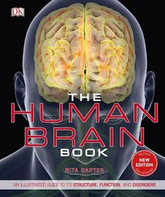 Brain Structure, Structure And Function, Brain Anatomy, Anatomy And Physiology, Mirror Neuron, Corpus Callosum, Brain Book, Visual Cortex, Dk Publishing