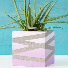 Turn a humble concrete block into an outdoor planter. Our downloadable patterns make it easy.