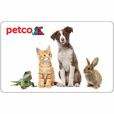 $50.00 Petco Gift Card Giveaway