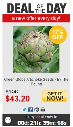 Don't forget to check out our Deal of the Day! There's something new every day with a price guaranteed to knock your socks off! Deal Of Day, Artichoke, Knock Knock, Don't Forget, Seeds, Vegetables, Green, Check, Artichokes