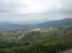 LEBANON, HAMANA VALLEY FALOUGHA PINE FOREST TO THE RIGHT