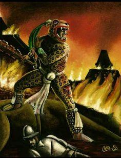 Aztec Jaguar Knight, in a more accurate portrayal than most ! Aztecas Art, Mayan Tattoos, Azteca Tattoo, Ancient Aztecs, Aztec Culture, Aztec Warrior, Jaguar, Chicano Art, Inca