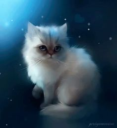 Amour de chat chat trop mighonchat trop mignon et drole trop mignon dessinphoto de chat mignon et rigolochat drolevideos de chats trop mignonschat mignon dessin Pet Anime, Anime Animals, Cute Animals, Image Chat, Photo Chat, Beautiful Cats, Animal Drawings, Drawing Animals, Animal Illustrations