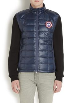 Hybridge navy quilted shell gilet - FY14 - Editorial