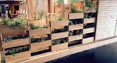 Trendy wand gemaakt van moestuinbakken van Lariks Douglas houten 2x20 mm planken en 5x15 cm balken (verticaal).