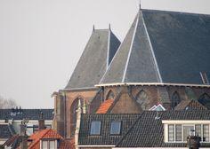 Detail RK Buitenkerk met waterspuwers (Panoramio - Remy Steller)