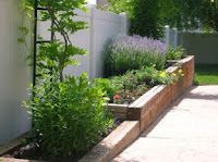 Positively Organic: Sensory Garden - lists of plants for each of the five senses