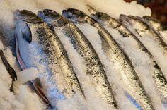 20 por ciento del pescado está mal etiquetado