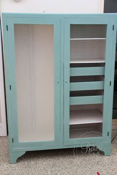 Annie Sloan Chalk Paint Wardrobe Makeover and Using Chicken Wire