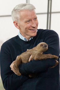I can't even handle it. Love it so much. Anderson Cooper AND a sloth?! @Molly Lindsey I about died!