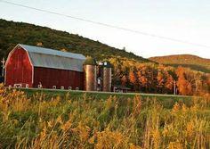 Barn in the fall...