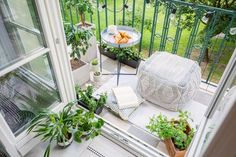 From herbs like oregano and thyme to flowers like marigolds and mums, here's your guide to the best plants to grow on your balcony, based on how much sun or shade your space gets. Parsley Plant, Oregano Plant, Sage Plant, Rosemary Plant, Mint Plants, Cool Plants, Mum Seeds, Terrace Decor, Lower Lights