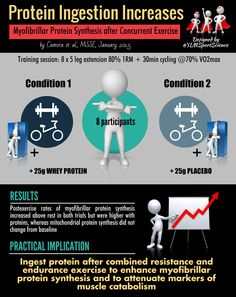 Protein ingestion and concurrent training