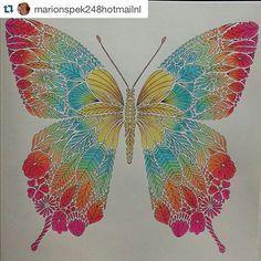 #ShareIG #Repost Ilustração pertencente ao novo livro da Millie Marrota - Tropical Wonderland. Lindo!!!!(
