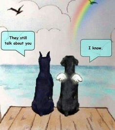 Dog Poems, Dog Quotes, Animal Quotes, All Dogs, I Love Dogs, Puppy Love, Cute Dogs, Animals And Pets, Funny Animals