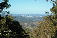 While crowds flock to nearby Jollys Lookout, up on Camp Mountain a much smaller group of picnickers enjoy views of city and bay that are just as spectacular. Brisbane Cbd, Picnic Spot, Australia Travel, Day Trip, Grand Canyon, Places To Go, Mountain, Camping, Park