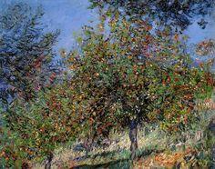 Pommiers sur la côte de Chantemesle (C Monet - W 491)