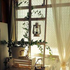 女性で、3LDKのセリア/窓枠パーティション/窓枠/フレームリメイク/DIY/アイビー…などについてのインテリア実例を紹介。「セリアのA4フレームで作った窓枠。今までLDKを仕切るパーテーション代わりに使っていましたが、模様替えして使わなくなったので、窓辺のカーテンレールに吊り下げました。」(この写真は 2013-10-11 12:39:15 に共有されました)