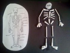 manualidad esqueleto