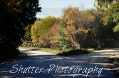 Forked - Shutter Photography Shutter Photography, Shutters, Blinds, Shades, Window Shutters, Exterior Shutters, Shutterfly