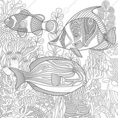 Adult Coloring Pages Tropical Fish Zentangle Doodle