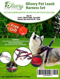 Nylon Pet Dog Leash Belt Puppy Walkiing Training Dog Lead Running Rope Leashes For Small Meduim Dogs Chihuahua Pug Pet Supplies Sophisticated Technologies Dog Collars & Leads Leashes